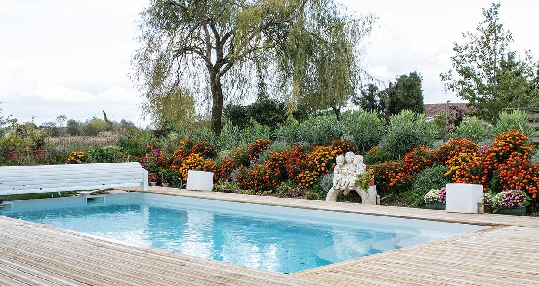 Piscine dans terrasse en bois avec haie de fleurs